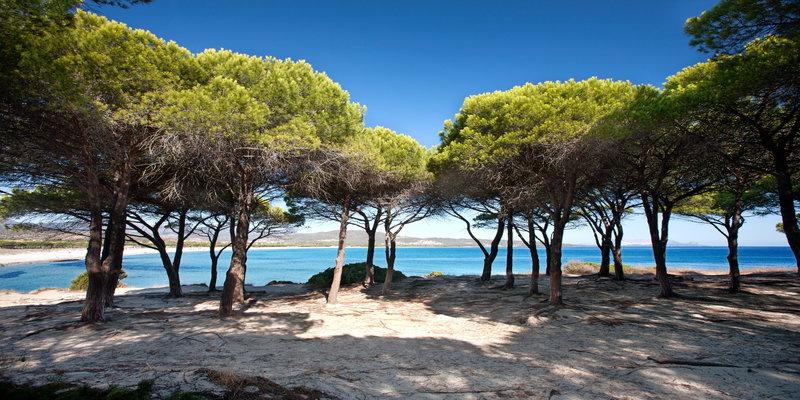 Spiagge a budoni camping village pedra e cupa sardegna for Sardegna budoni spiagge